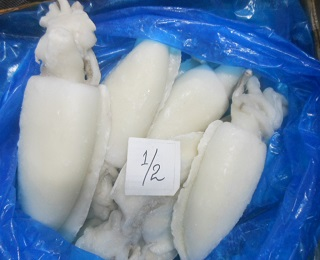 Whole Round Cuttlefish-packing